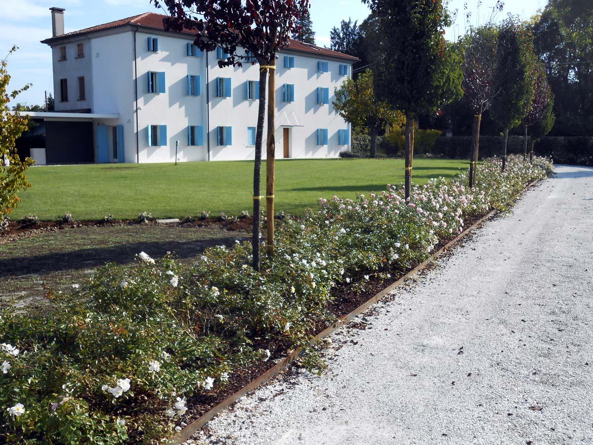 Giardino a Lancenigo - GreenVeronica